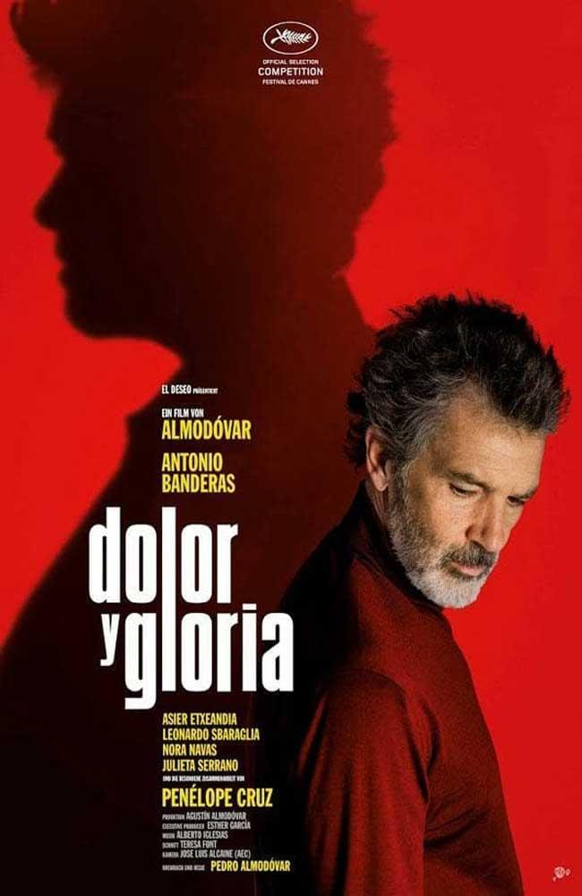 Ver Pelicula Dolor y Gloria Online HD