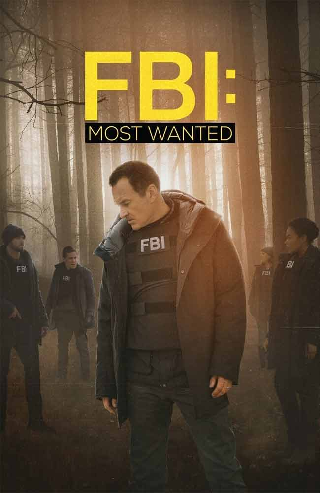 Ver Serie FBI: Most Wanted Online HD