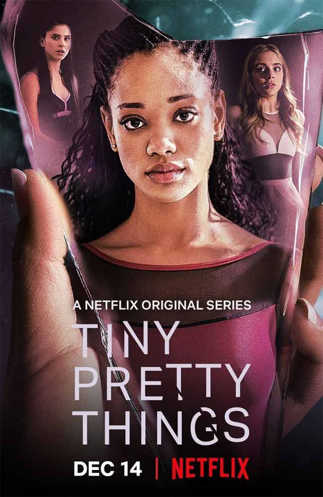 Ver Serie Tiny Pretty Things Online HD